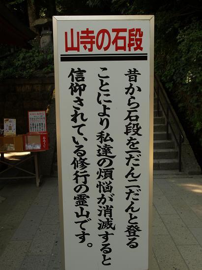 P9078396.JPG